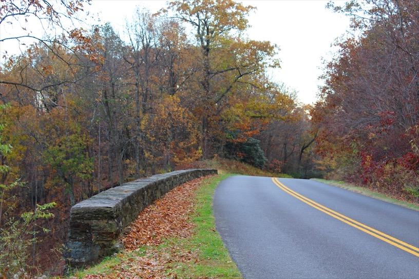 Fall Foliage along the Blue Ridge Parkway